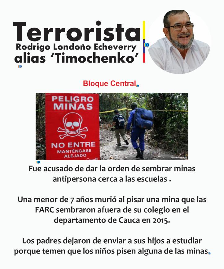 timochenko3