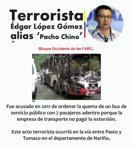 pacho5 (2)